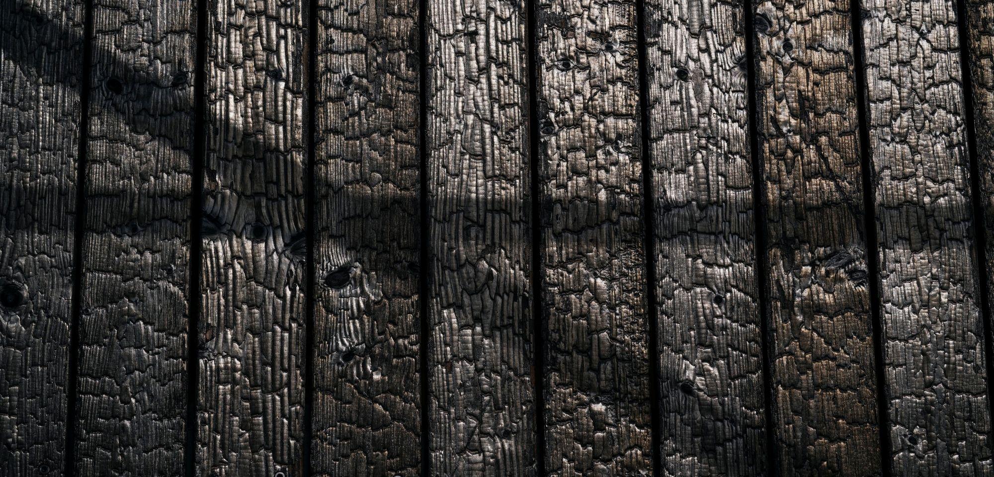 Facciata esterna carbonizzata - Yakisugi © Manfred Jarisch, Bayerische Staatsforsten