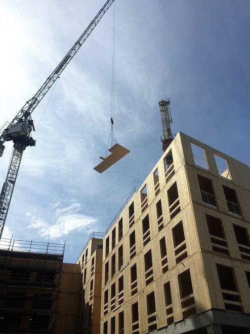 Stiegenhäuser wie auch die Liftschächte wurden mit Brettsperrholz Elemente umgesetzt