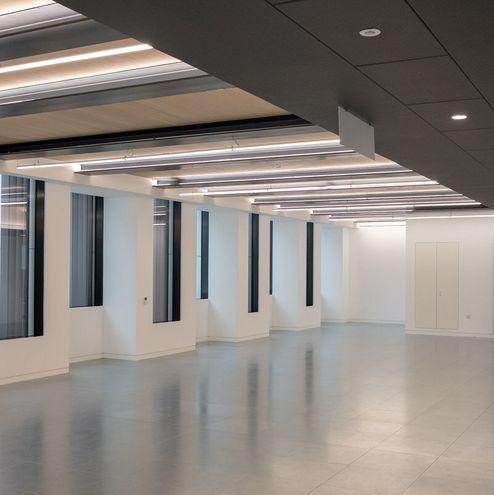 Sichtbares binderholz Brettsperrholz BBS im Raum © RED Construction Group