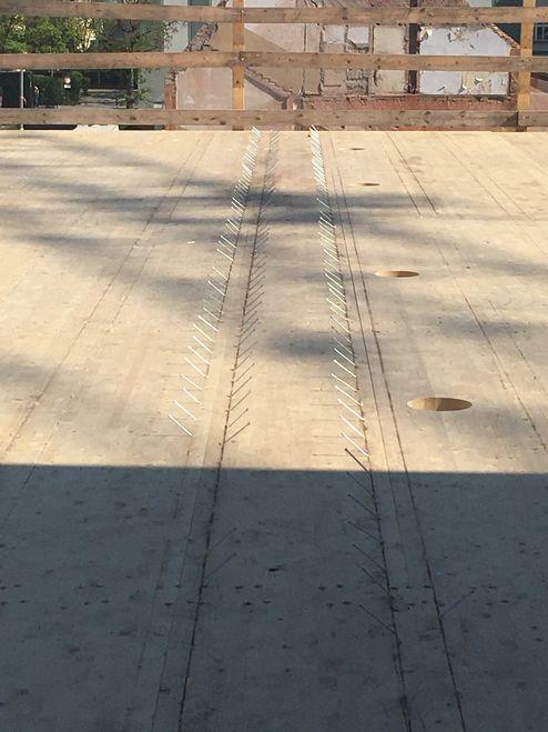 Il tetto è stato realizzato con elementi X-LAM BBS binderholz © Bayerische Staatsforsten