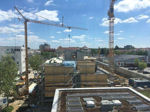 Fase di costruzione © Bayerische Staatsforsten
