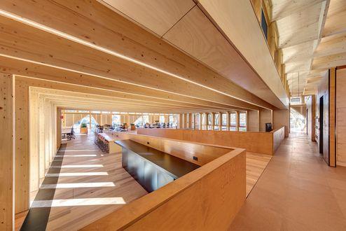 Großflächige Holzbalken und V- Stützen aus binderholz Brettschichtholz BSH © Murray Fredericks